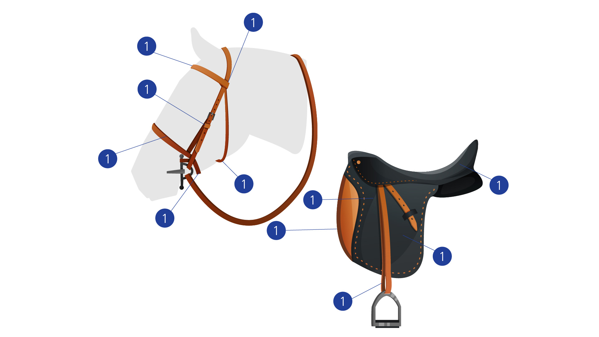 bridle and saddle