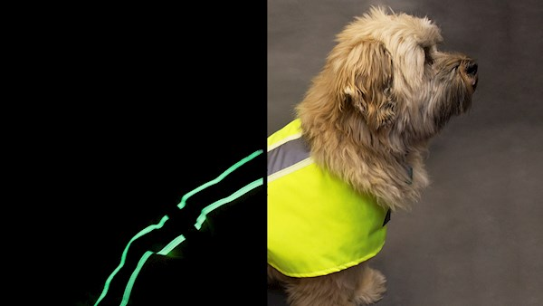 Reflective tape dogs