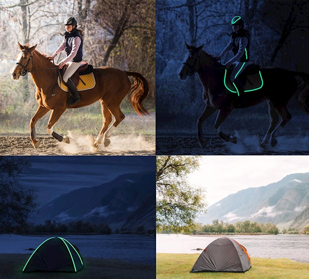 Signal Tent and Horse