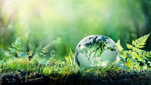 Global Sustainability Certifications
